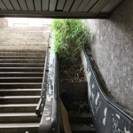 Disused Escalator